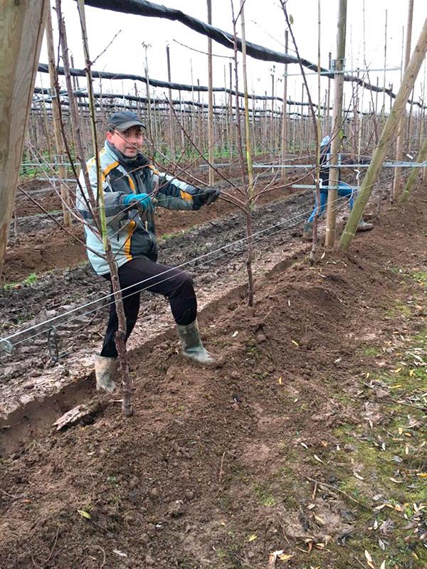 Garten Arbeiten im Winter